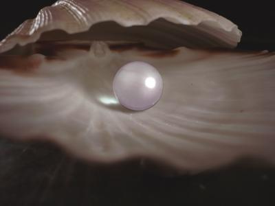 Perlen  www.Carl-Witzel.de